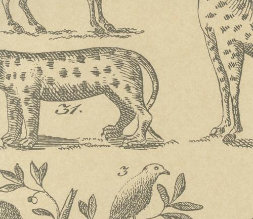 andrew_martin_museum_wallpapers_ark_parchment_wallpaper