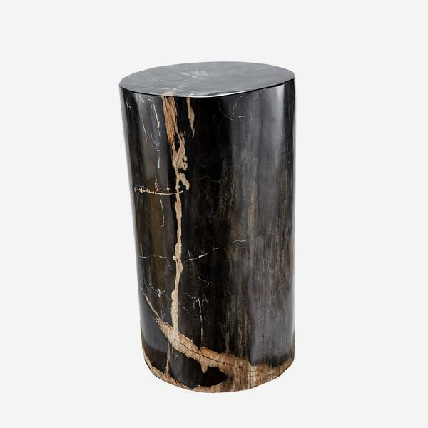 Petrified_Log_Stool_5