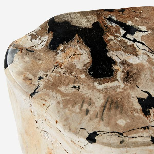 Petrified_Log_Stool_Detail_1