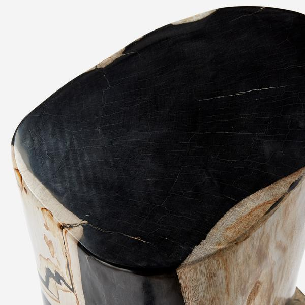 Petrified_Log_Stool_Detail_2
