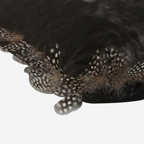 Vince_Charcoal_Cushion_with_Guinea_Feather_Cushion_Detail_ACC2697_
